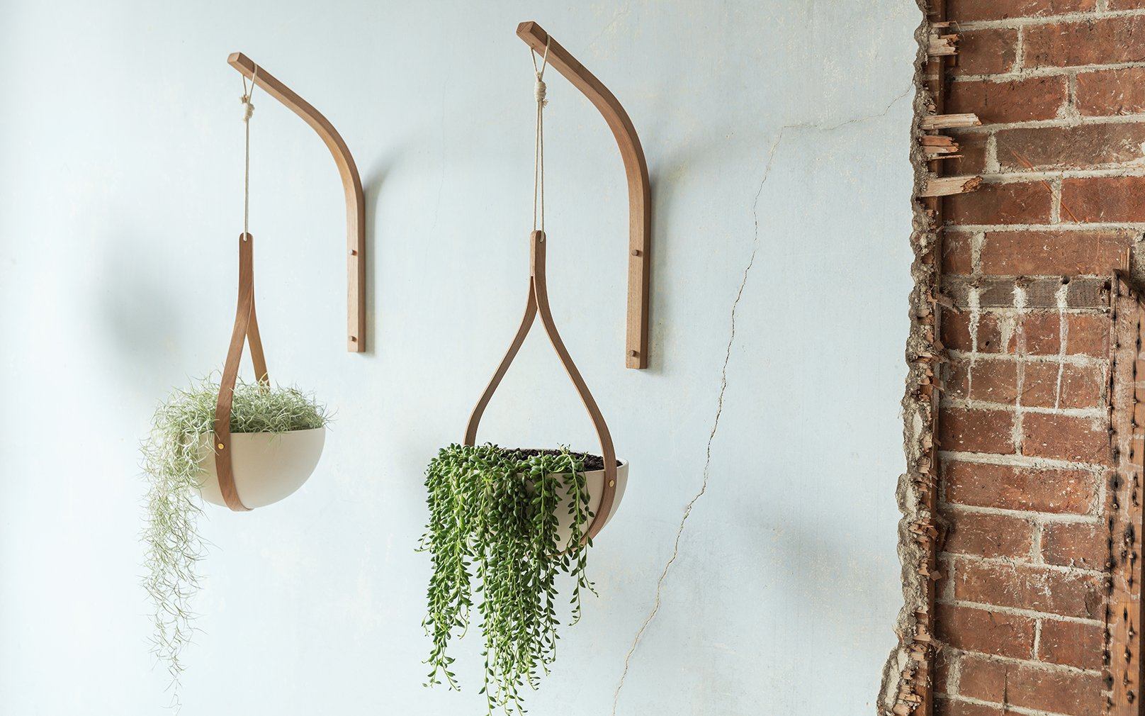 5 Amazingly Beautiful  Hanging Planters on Pepperfry