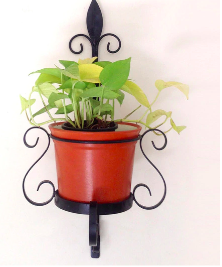 Metal Wall Planter with Pot