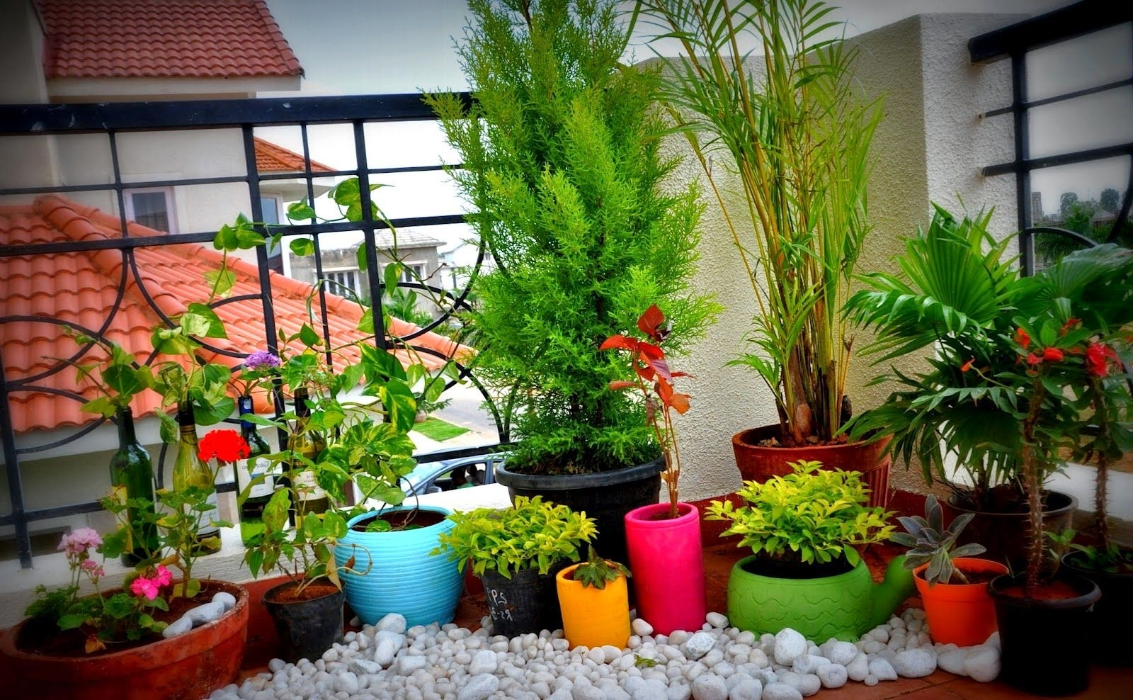 Balcony Gardens Prove That Green is Always in Trending