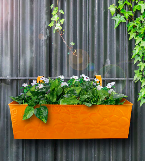 Rectangular Planter on Pepperfry - Furniture20