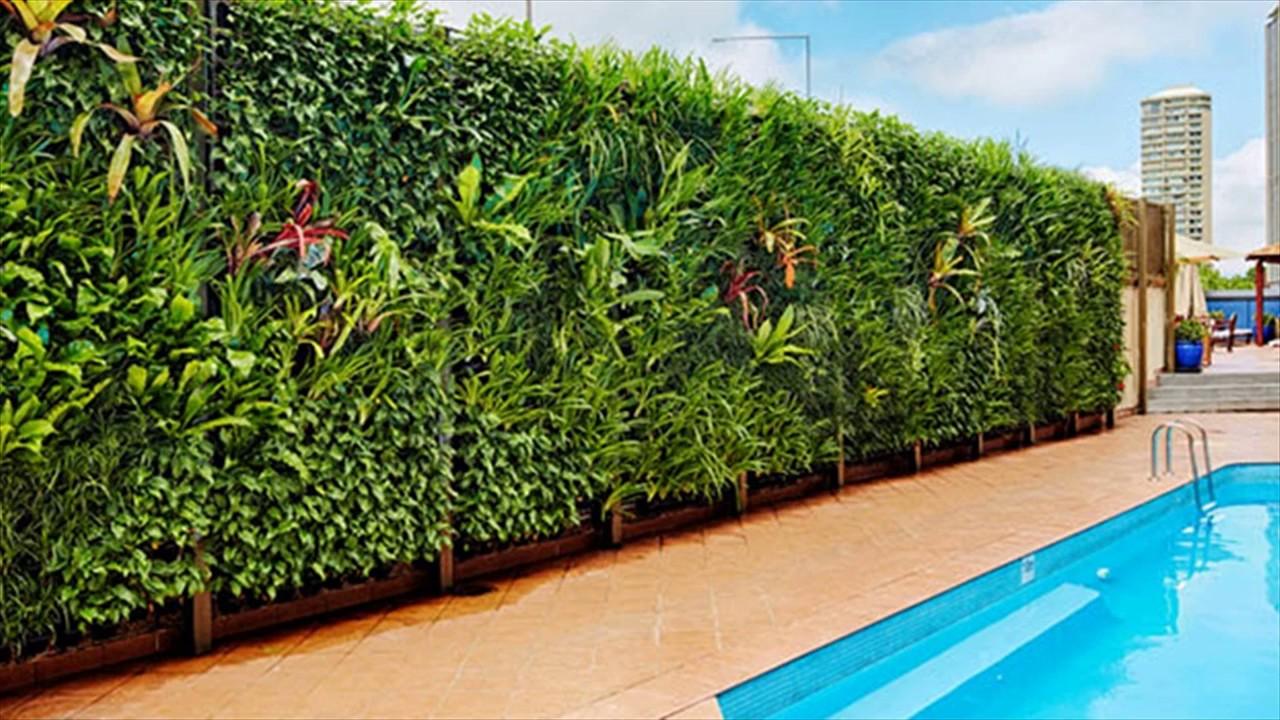 Try these 5 gizmo to keep Vertical Garden aka Modern garden.