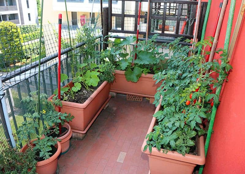 balcony-kitchen-garden